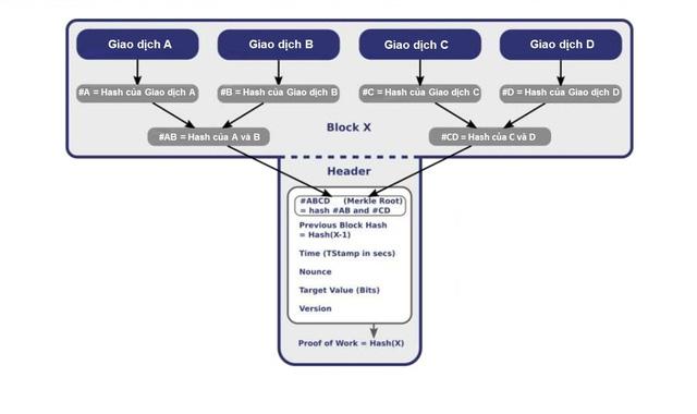 Quá trình hashing tạo thành cây nhị phân Merkle Tree